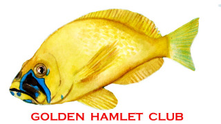 Official Golden Hamlet Image by Eleanor Pigman