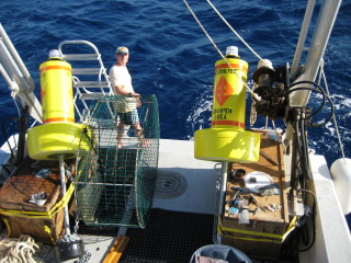 Grouper Moon lead scientist Brice Semmens fishing to tag Nassau grouper for acoustic tagging on Cayman Brac.: The yellow buoys are deployed to indicate the spawning aggregation protected areas.