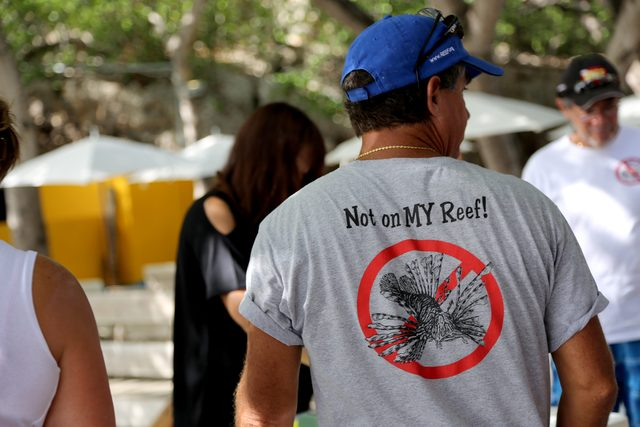 Lionfish tshirt: A fitting shirt for lionfish removal...check out the others at the REEF shop!