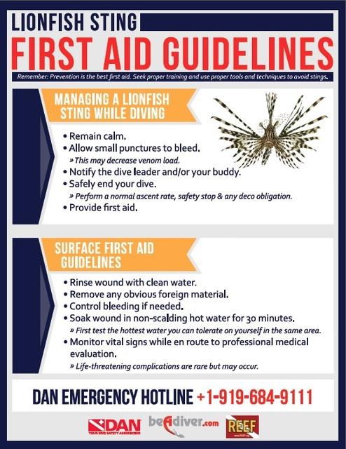 Lionfish First Aid Guidelines