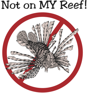Remove Lionfish from our reefs