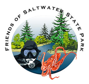 Friends of Saltwater State Park