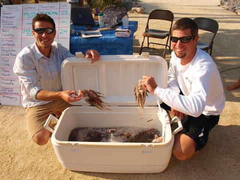 Team Strategery brings in 158 lionfish.